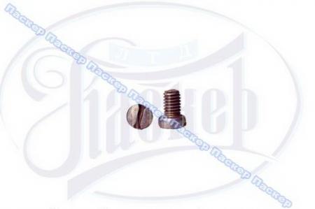 Винт М6х8 крепления маслоотражателя полуоси 2101-07, 1/03763/01
